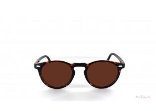 Briloro Specs in Braun