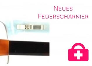 neues Federscharnier - Kunststoffbrille
