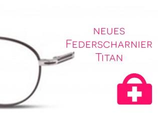 neues Federscharnier - Titanbrille